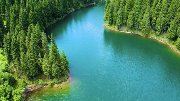 Widok z lotu ptaka na płynącą rzekę otoczoną sosnami w parku