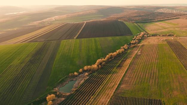 Widok z lotu ptaka na pola pszenicy