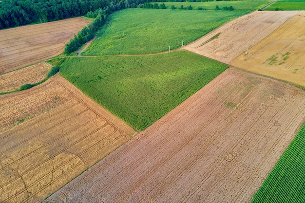 Widok z lotu ptaka na pola uprawne i zielone na wsi