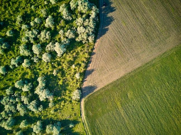 Widok z lotu ptaka na pola uprawne. widok z góry.