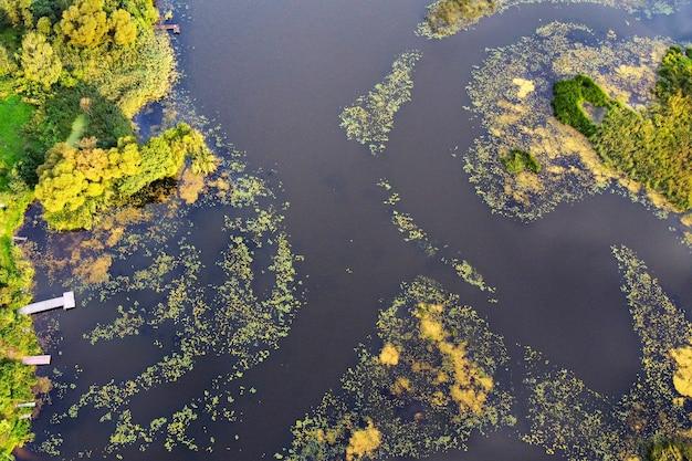 Widok z lotu ptaka na rzekę z zielenią na powierzchni wody i molo na brzegu, krajobraz lato