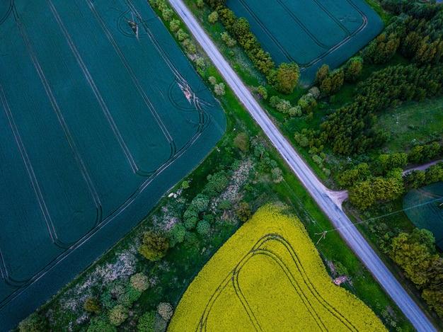 Widok z lotu ptaka na wiejską drogę między polami pszenicy