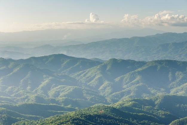 Widok z lotu ptaka na wysoki las górski