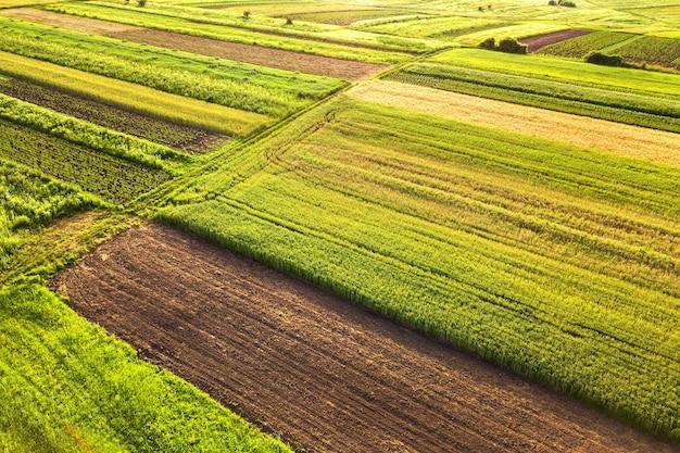 Widok z lotu ptaka na zielone pola uprawne wiosną ze świeżą roślinnością