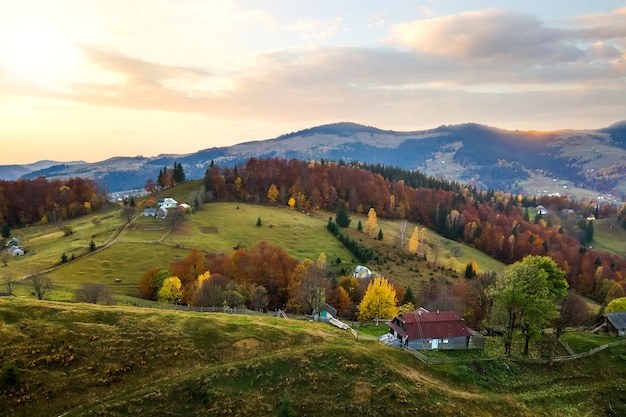 Widok z lotu ptaka odległej wioski z małymi domami pasterskimi na rozległych łąkach wzgórza między jesiennymi drzewami leśnymi w ukraińskich karpatach o zachodzie słońca.