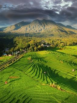 Widok z lotu ptaka pól ryżowych w górach indonezji