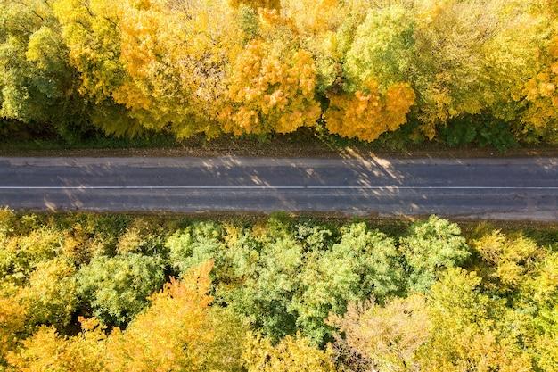 Widok z lotu ptaka pustej drogi między żółtymi jesiennymi drzewami.