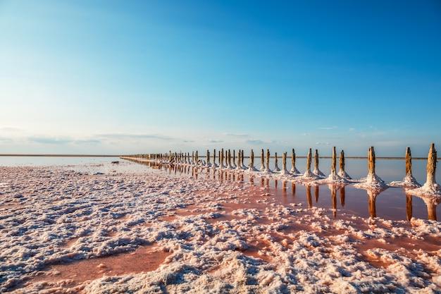 Widok z lotu ptaka różowy jezioro i piaskowata plaża
