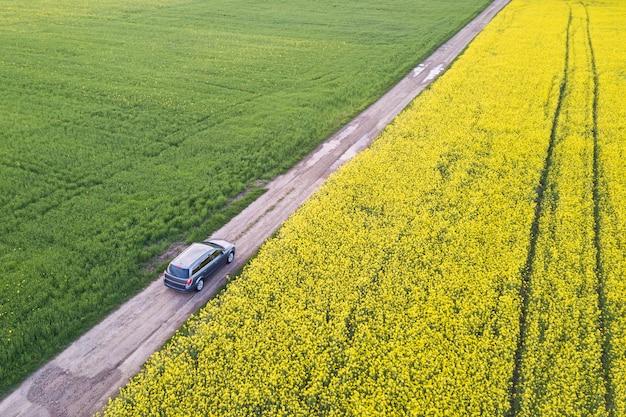 Widok z lotu ptaka samochodem jadącym prostą drogą gruntową przez zielone pola