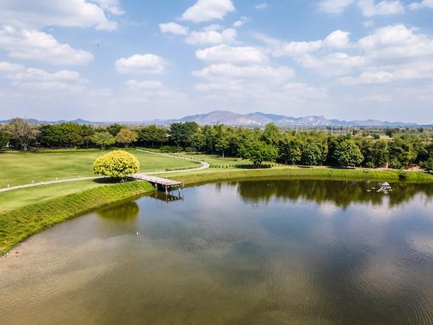 Widok z lotu ptaka scenerii drewnianego molo nad jeziorem z zielonym trawnikiem i błękitnym niebem