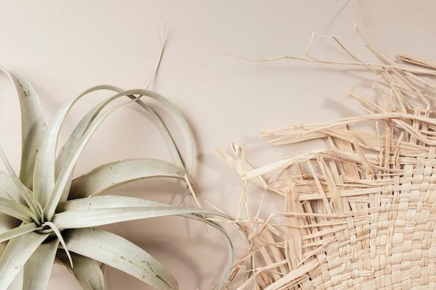 Widok z lotu ptaka tkanego kapelusza i suszonej rośliny