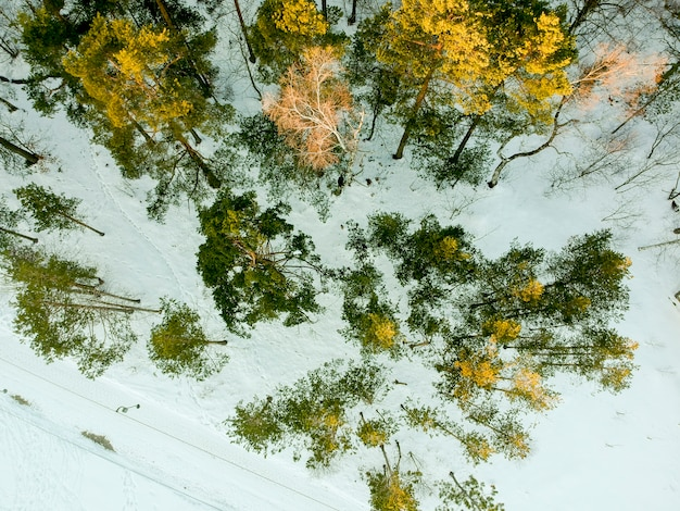 Widok z lotu ptaka w divcibare, serbia w okresie zimowym