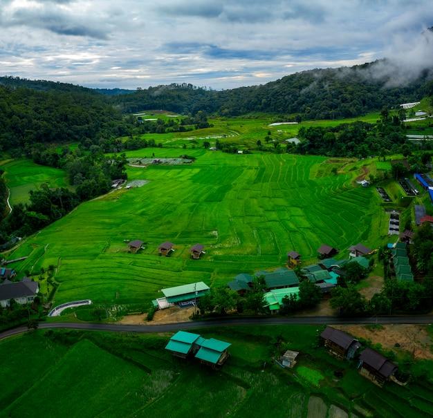 Widok z lotu ptaka wioski tarasu ryżowego w chiang mai w północnej tajlandii