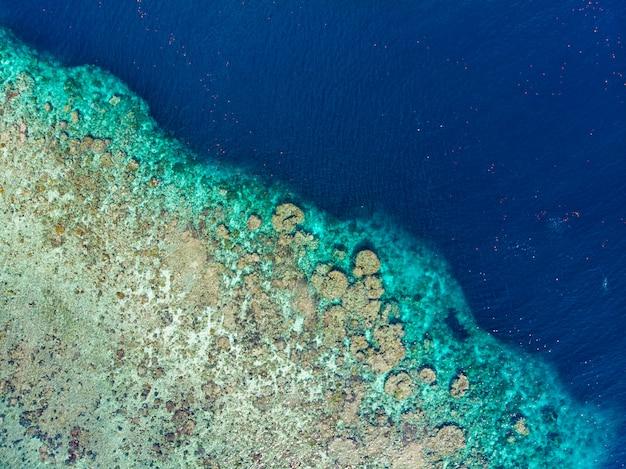 Widok z lotu ptaka z góry na dół rafa koralowa tropikalne morze karaibskie, turkusowa woda. indonezja archipelag moluccas, wyspy banda, pulau hatta. najlepsza miejscowość turystyczna, najlepsze nurkowanie z rurką.