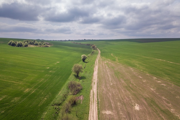 Widok z lotu ptaka zieleni rolnictwa pola w wiośnie z świeżą roślinnością po siać sezon.