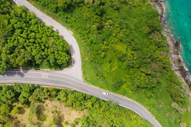 Widok z lotu ptaka zielone drzewo i droga