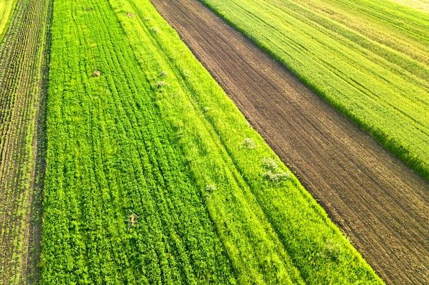 Widok z lotu ptaka zielone pola rolnicze na wiosnę ze świeżą roślinnością