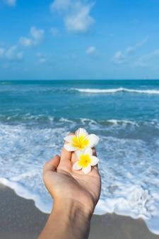 Widok z pierwszej osoby dziewczyna trzyma w dłoni kwiat frangipani na tle morza. spokój i relaks według koncepcji morza