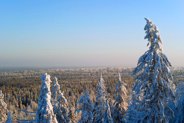 Widok z przełęczy na wzgórza pokryte zimowym lasem po horyzont