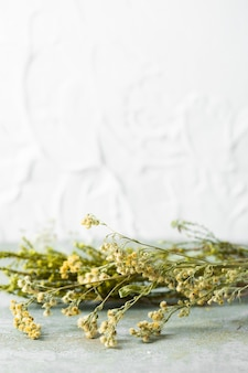 Widok z przodu bukiet kwiatów do pielęgnacji skóry