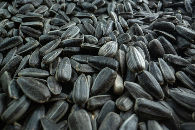 Widok z przodu czarne nasiona słonecznika wiele orzechowych przekąsek filmowych!