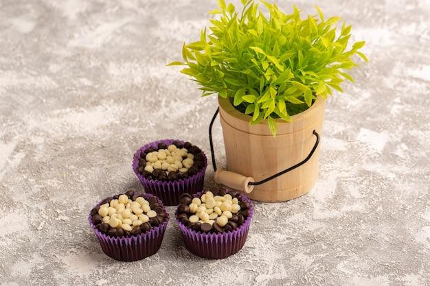 Widok z przodu czekoladowych ciastek z zieloną rośliną na jasnym biurku