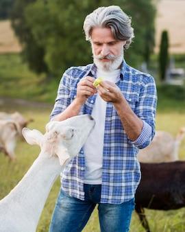 Widok z przodu człowieka na farmie kóz