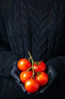 Widok z przodu dłonie kobiety w czarnych rękawiczkach trzymające gałązkę pomidora