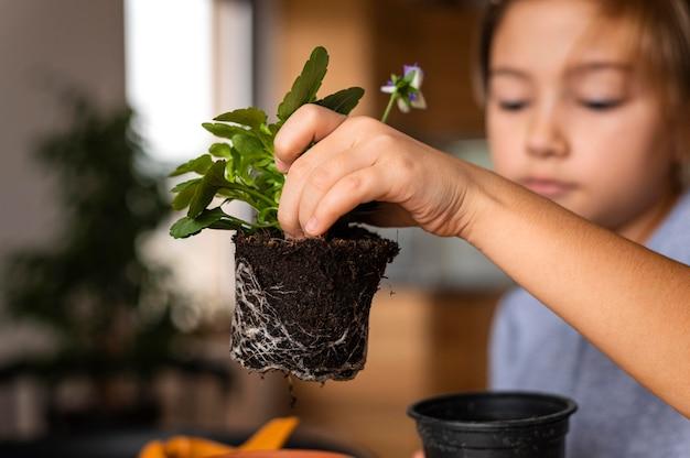Widok z przodu dziewczynki sadzenia kwiatów w doniczce w domu