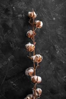 Widok z przodu gałąź z włókna bawełnianego