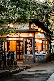 Widok z przodu japońskiej konstrukcji z latarniami i naturą