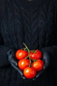 Widok z przodu kobiece dłonie w czarnych rękawiczkach trzymające gałązkę pomidora
