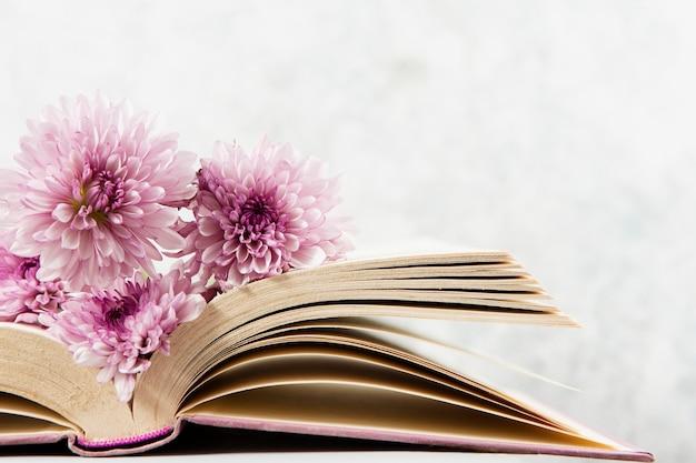Widok z przodu kwiatu na otwartej księdze