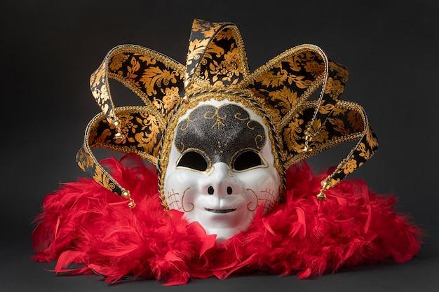 Widok z przodu maski karnawałowej z piórami