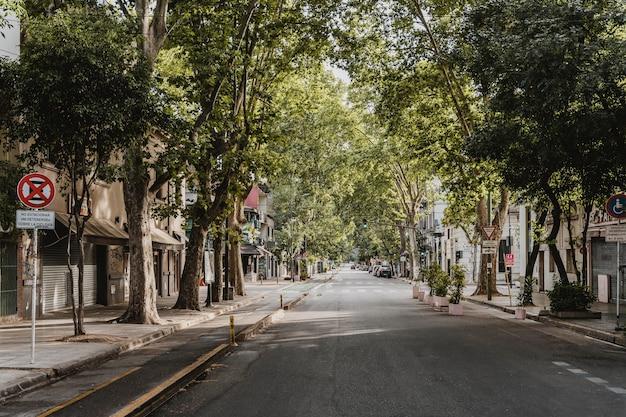 Widok z przodu na ładną ulicę w mieście