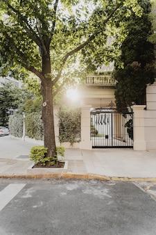 Widok z przodu ulicy miasta z drzewem i wejściem do budynku