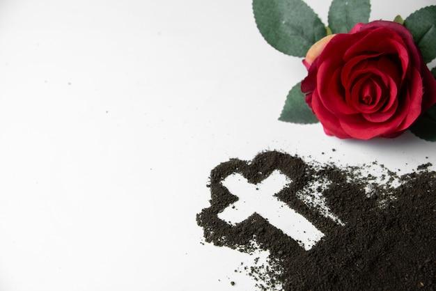 Widok z przodu w kształcie krzyża z glebą i czerwonym kwiatem na białej powierzchni