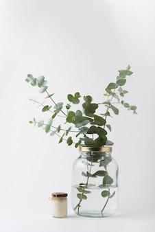Widok z przodu zielone liście w słoiku