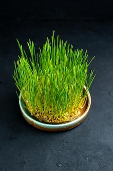 Widok z przodu zielone semeni wakacyjne na ciemnej powierzchni