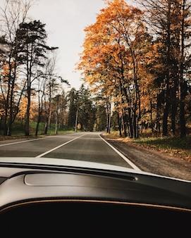 Widok z samochodu pięknych jesiennych krajobrazów. prosta droga, żółte drzewa i podróż samochodem