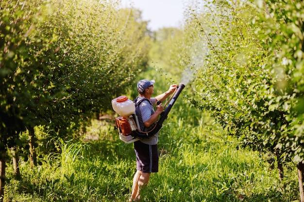 Widok z tyłu dojrzałego chłopa rasy kaukaskiej w ubraniu roboczym, kapeluszu i nowoczesnej maszynie do rozpylania pestycydów na plecach rozpylającej owady w sadzie.