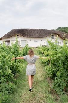 Widok z tyłu kobiety w letniej sukience spacerującej po winnicy