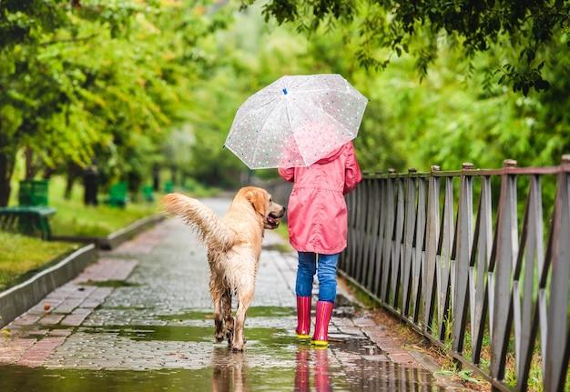 Widok z tyłu małej kobiety spaceru z psem w deszczu wzdłuż mokrej alei