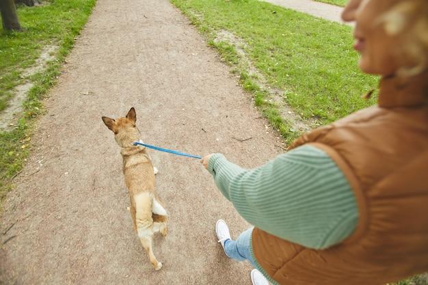 Widok z tyłu młodej kobiety spacerującej z psem na smyczy wzdłuż ścieżki na zewnątrz