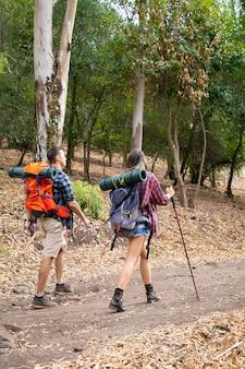 Widok z tyłu młodych ludzi pieszych w lesie w słoneczny dzień. podróżni i przyjaciele spacerujący z plecakami po lesie. kobieta trzyma słup. koncepcja turystyki z plecakiem, przygody i wakacji letnich