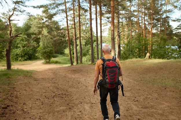 Widok z tyłu nierozpoznawalnego starszego emeryta niosącego plecak spacerujący ścieżką podczas wędrówki po lesie w słoneczny jesienny dzień. ludzie, wiek, aktywność, wypoczynek, rekreacja i podróże
