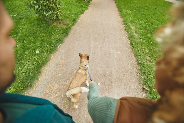 Widok z tyłu pary idącej ścieżką ze swoim zwierzakiem na smyczy