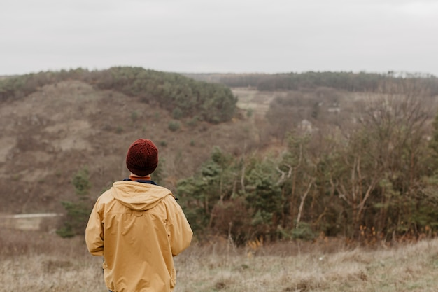 Widok z tyłu podróżnik patrząc na krajobraz
