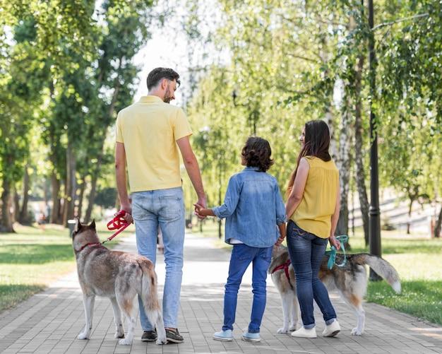 Widok z tyłu rodziny z dzieckiem i psami na świeżym powietrzu w parku