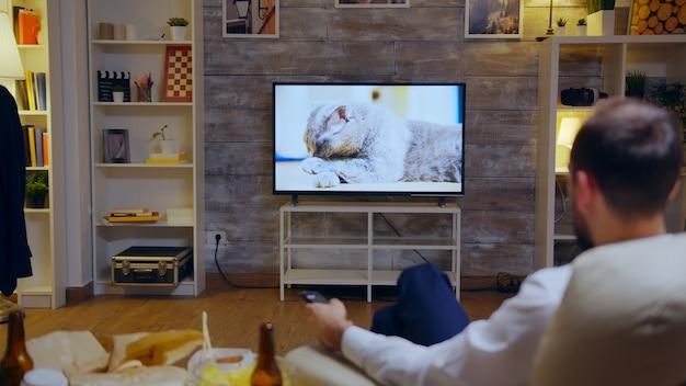 Widok z tyłu zapracowanego przedsiębiorcy oglądającego w telewizji film dokumentalny o kotach.